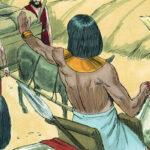 سفر دوباره به مصر