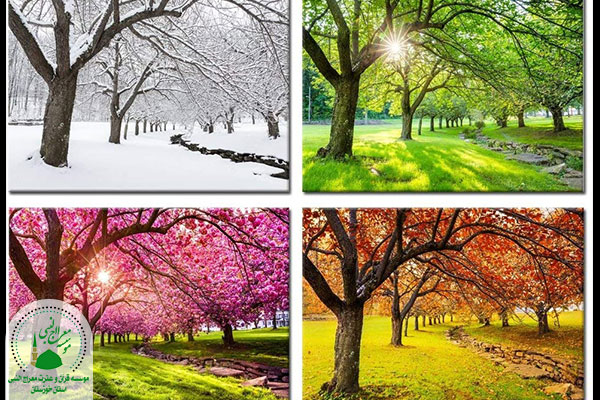 چهار فصل