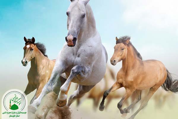 اسب دونده