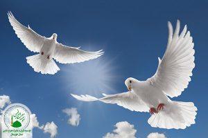 آزادی و آزادگی
